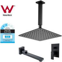 10in Shower Head w 200mm Roof Arm, Diverter & Spout