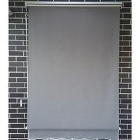 Outdoor Pivot Arm Roller Blind Awning in Grey 2m