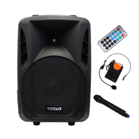 Portable Bluetooth 12 inch Speaker System & Remote