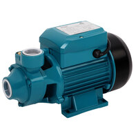 Electric Clean Water Pressure Pump 2100L/hr 0.5HP
