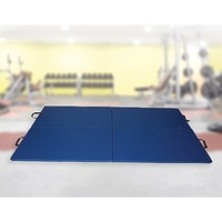 High Impact Exercise Mat, Gymnastics & Martial Arts