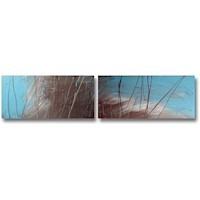 2 Canvas Abstract Painting #284