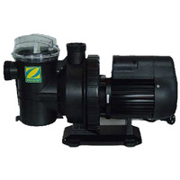 Zodiac Titan ZTS150 Swimming Pool Pump 1.5HP