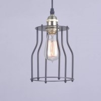 Antique Edison Globe Cage Pendant Light in Black