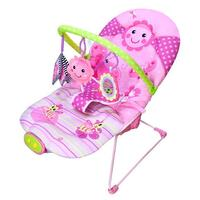 Dancing Flower Baby Bouncer Musical Activity Centre