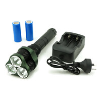 Rechargeable Cree LED Torch Flashlight with 3 Bulbs